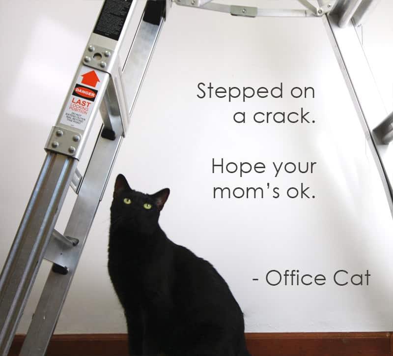 officecat2
