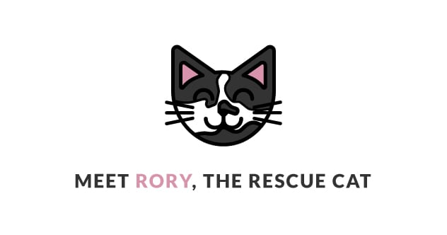 Meet Rory, the rescue cat