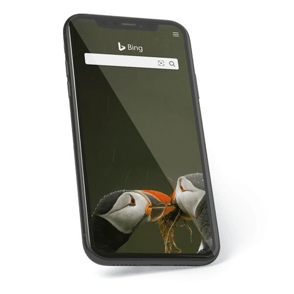 Smartphone with Bing search engine and toucans displayed at the bottom