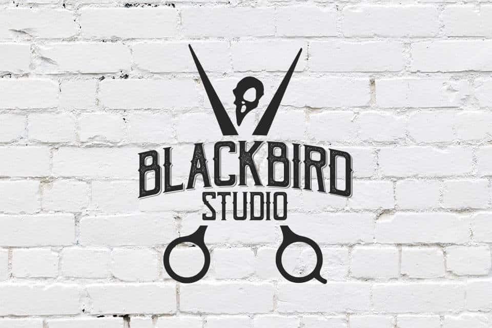 blackbird featured 02