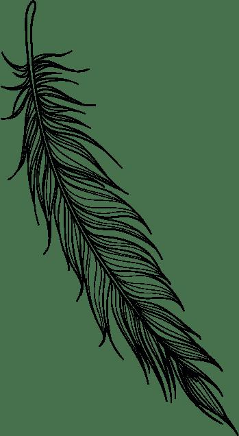 blackbird studio feather3 1